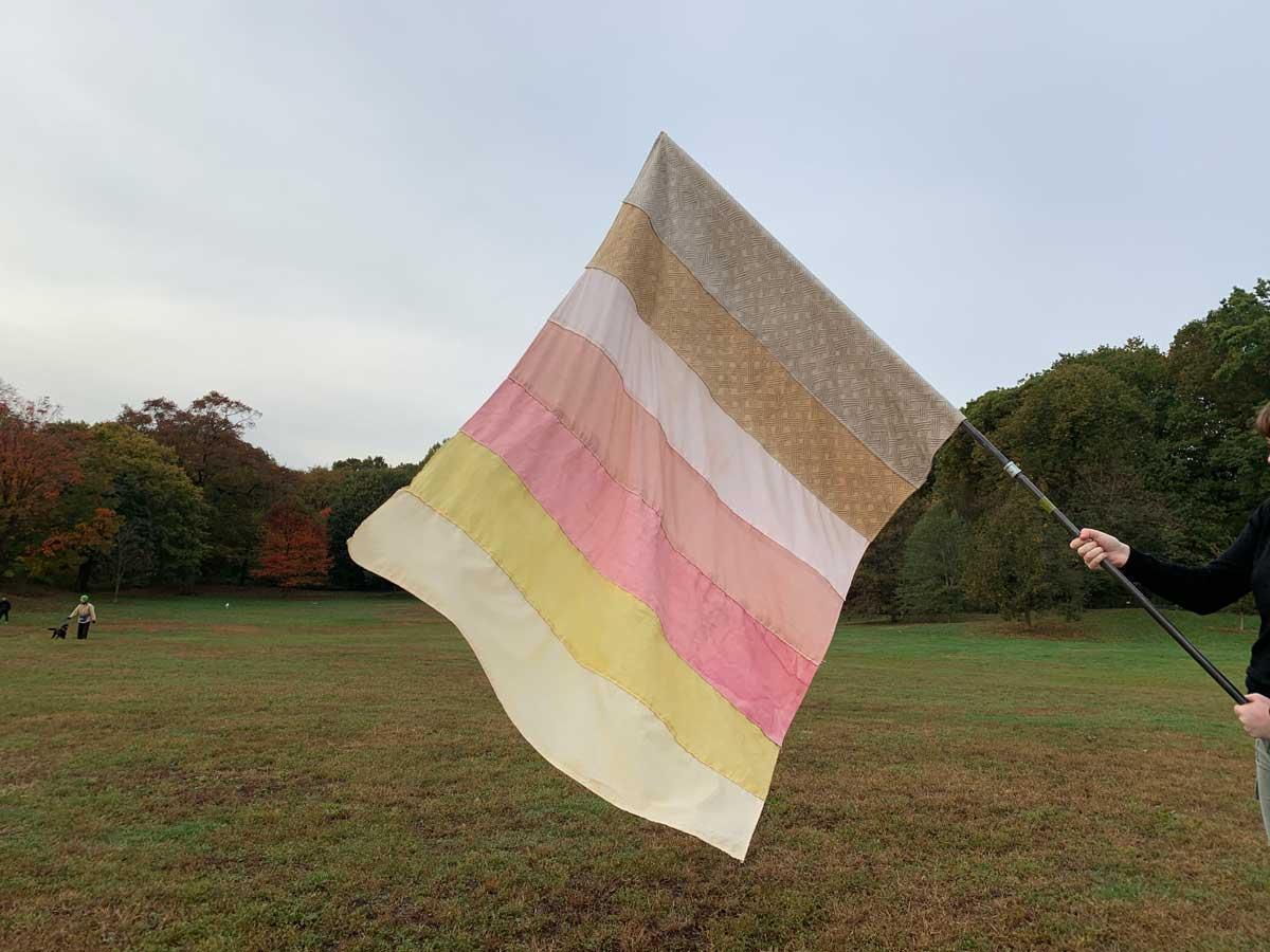 NYflag